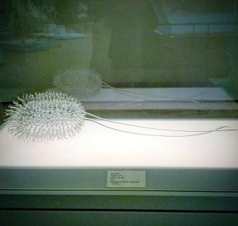 Luke Jerram's meticulous H2O contamination in glass sculpture at Chazen Museum, Madison Wisconsin entitled 'Large E. Coli' - 2010 #phantomoshopblog #phantomoshop #phantomotoi #phanomophigures